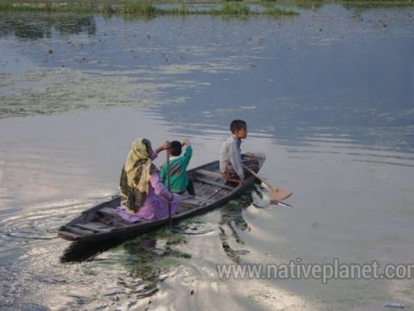 Srinagar photos, Dal Lake - A Ride through the Lake