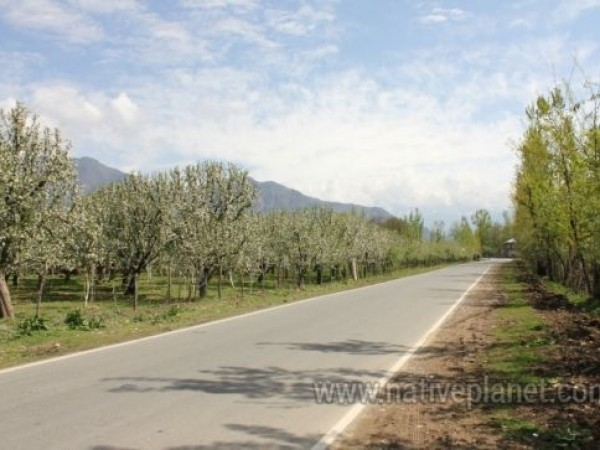 Kashmir photos, Kashmir - Road