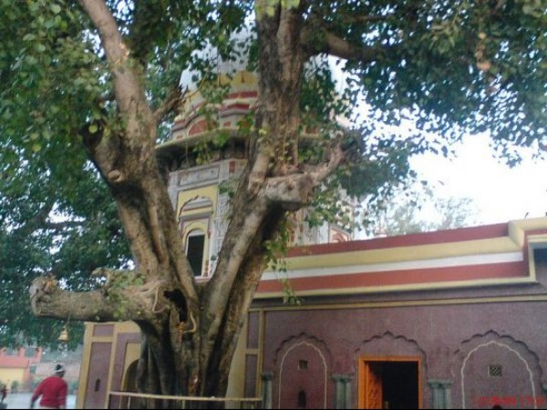 Nahan photos, Trilokpur Temple - The exterior view