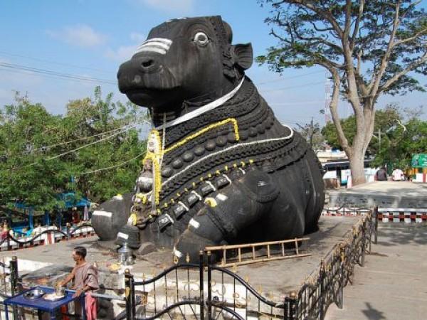 Mysore photos, Chamundi Hills - Nandi