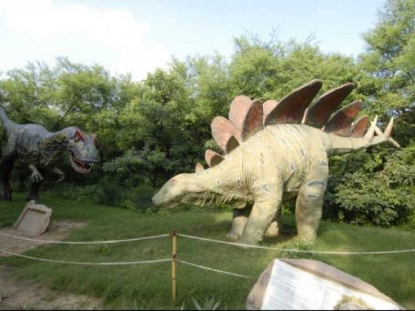 Gandhinagar photos, Indroda Dinosaur and Fossil Park