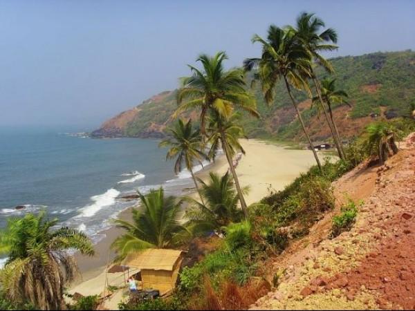 Goa photos, Arambol Beach - Sandy pathway, Palm trees & the sea....