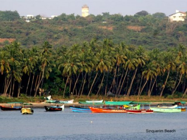 Goa photos, Sinquerim Beach - Swaying palms & colourful boats !