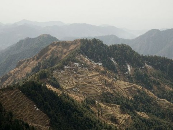 Mussoorie photos, Dhanolti - The beautiful terrace fields