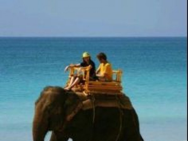 Andaman and Nicobar photos, Havelock Island - Elephant Ride