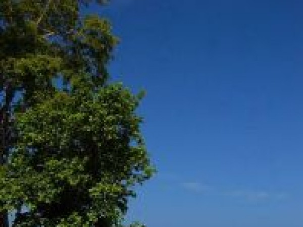 Andaman and Nicobar photos, Havelock Island - A Serene