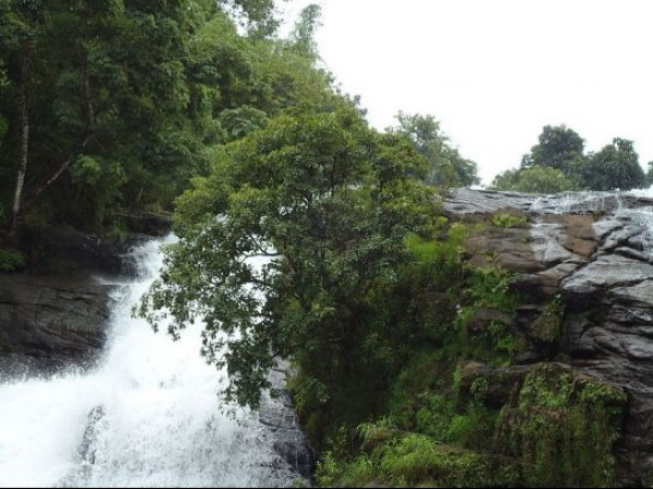Thrissur photos, Charpa Falls - A Lovely View