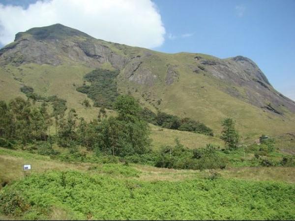 Munnar photos, Rajmala- A View Of The Anamudi Hills