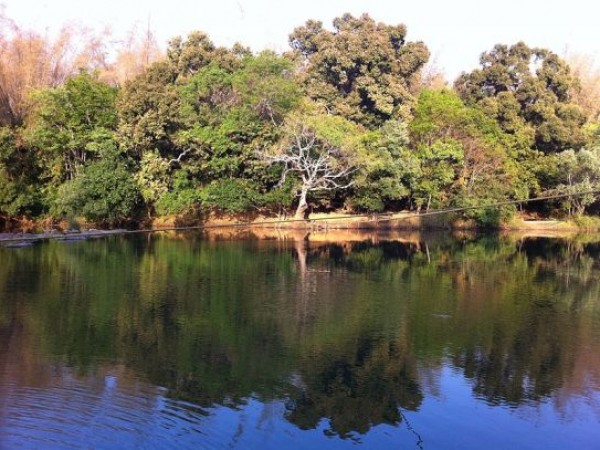 Wayanad photos, Kuruva Dweep - A Splendid Shot