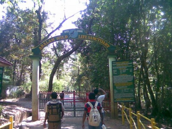 Kannur photos, Aralam Wildlife Sanctuary - The Archway