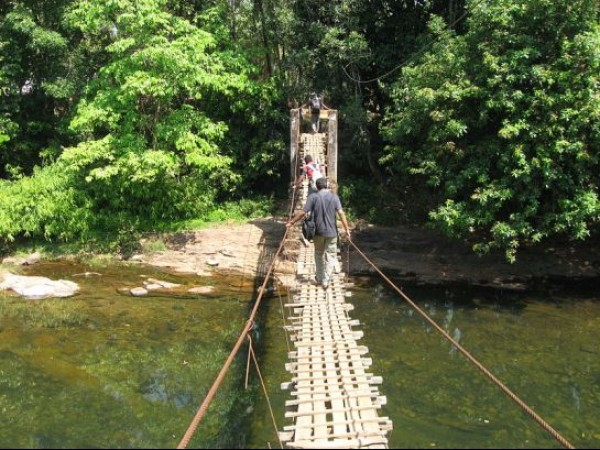 Kannur photos, Aralam Wildlife Sanctuary - Wooden Bridge