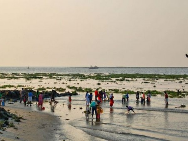 Kochi photos, Fort Kochi - Beach