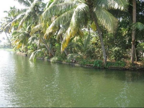 Alleppey photos, Kuttanad - Backwaters