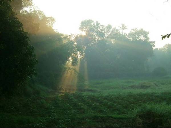 Kottayam photos, Sun Rays