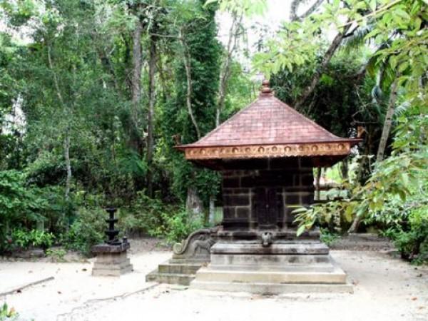 Alleppey photos, Mannarasala Sree Nagaraja Temple - A View