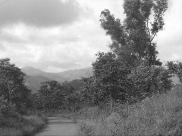 Idukki photos, Painavu - A Road