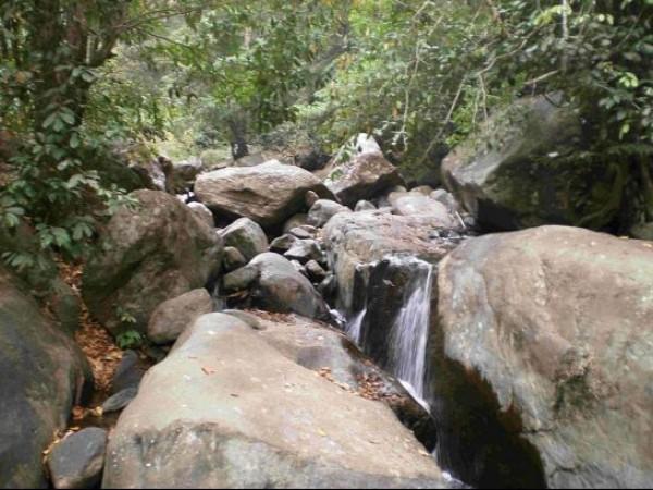 Kozhikode photos, Peruvannamuzhi Dam - Damsite Area