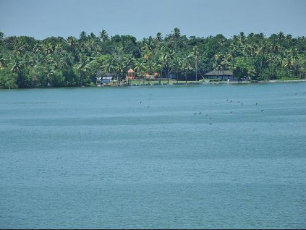 Kollam photos, Ashtamudi Backwaters - The Lake
