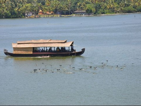 Kollam photos, Ashtamudi Backwaters - Sailing Boat and Flying Birds