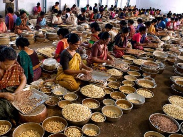 Kollam photos, Cashewnut-factory - Women At Work