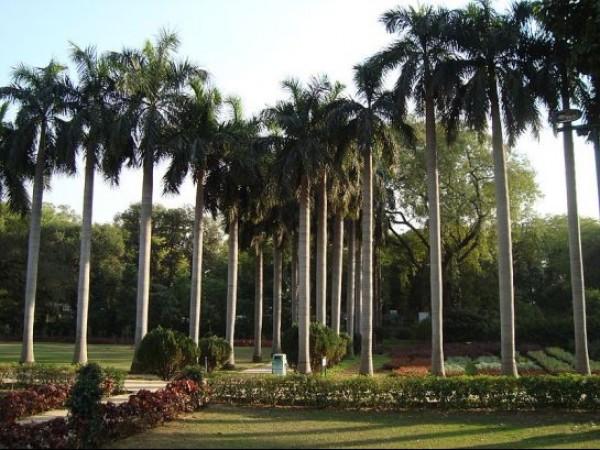 Delhi photos, Lodhi Garden - Landscape