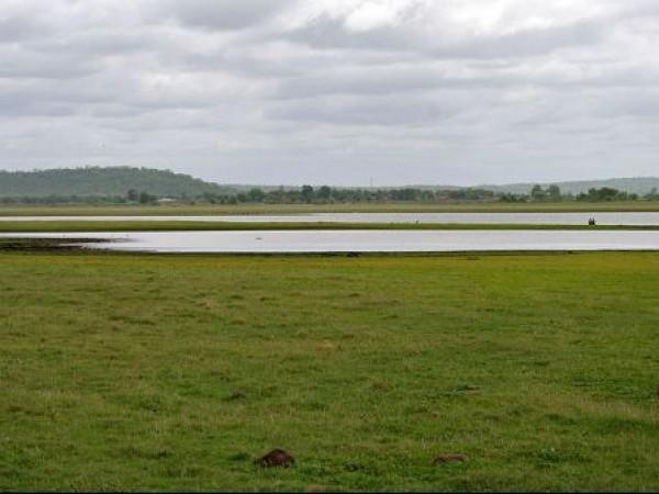 Medak photos, Pocharam Sanctuary - A view of the lake