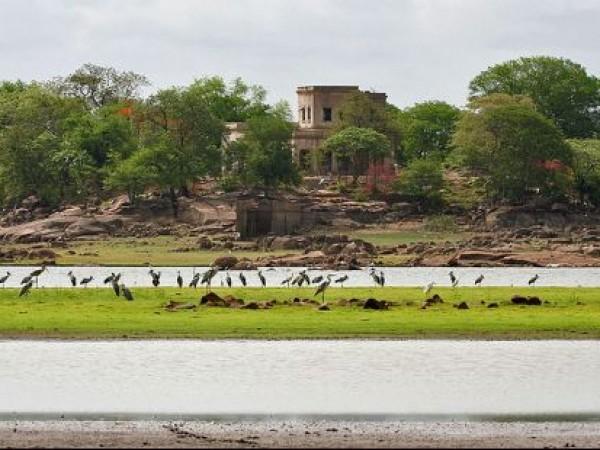 Medak photos, Pocharam Sanctuary - Lake