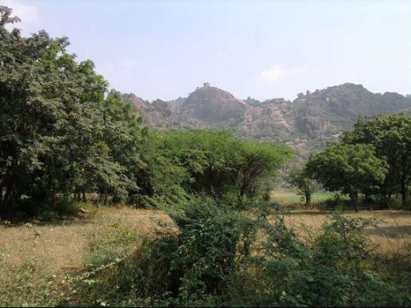 Guntur photos, Kondaveedu Fort - Distant View
