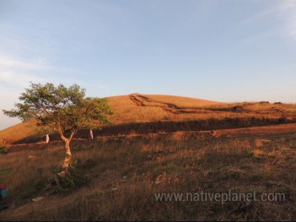 Kodachadri photos, Kodachadri - A beautiful view