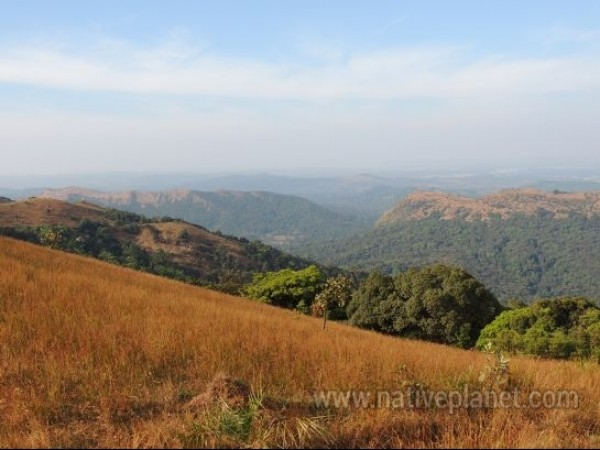 Kodachadri photos, Kodachadri - A perfect view