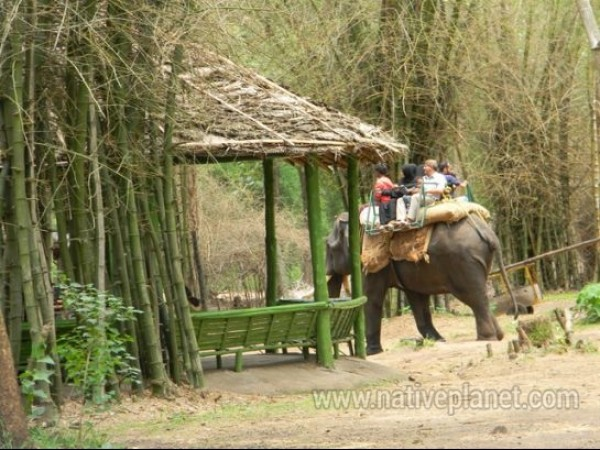 Coorg photos, Nisargadhama - Elephant ride in Nisargadhama