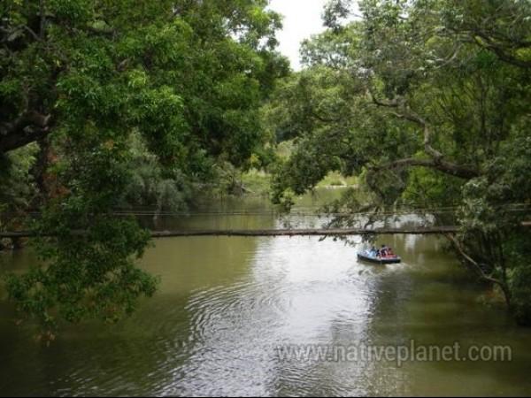 Coorg photos, Nisargadhama - Nisargadhama