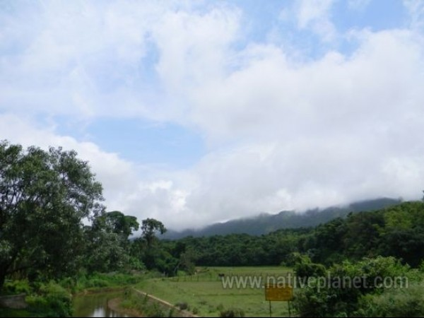 Coorg photos, Bhagamandala -