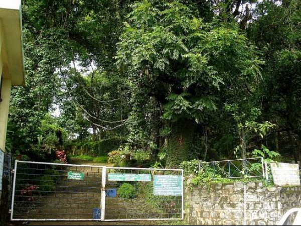 Yercaud photos, Botanical Garden - A gate of Botanical Garden