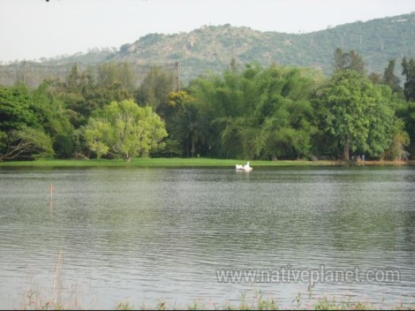 Mysore photos, Karanji Lake - Serene