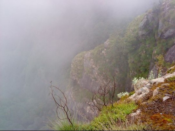 Kodaikanal photos, Green Valley View - Suicide Point