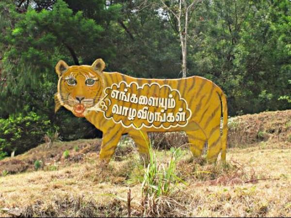 Kodaikanal photos, Berijam Lake - Tiger Sign