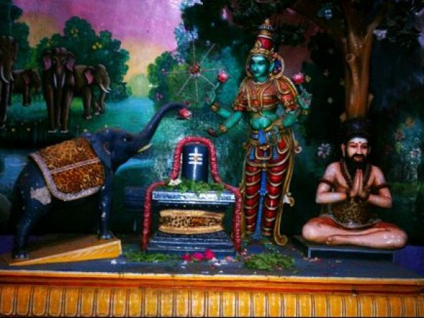Thiruvanaikaval photos, Jambulingeshwarar & Akilandeshwari Temple - A sight from the Jambalingeshwarar