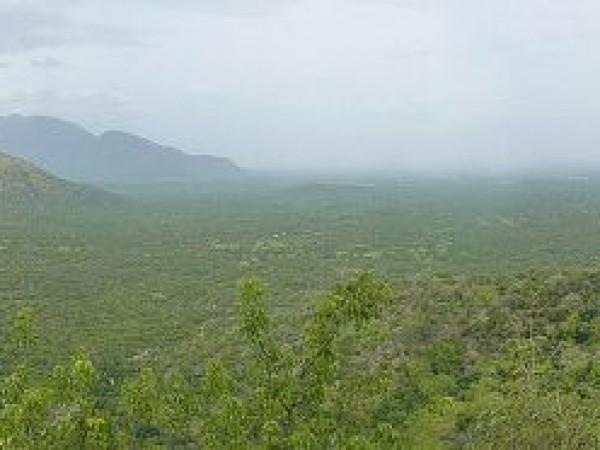 Erode photos, Bannari - A Scenic View