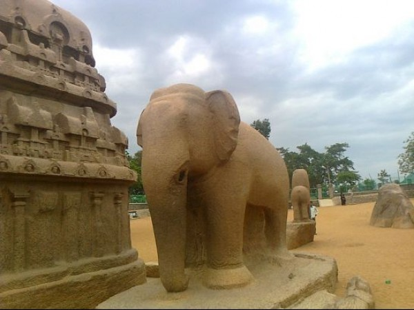 Mahabalipuram photos, Five Rathas - An Elephant Structure