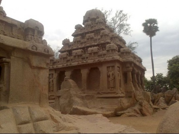 Mahabalipuram photos, Five Rathas - A Lower Angled View