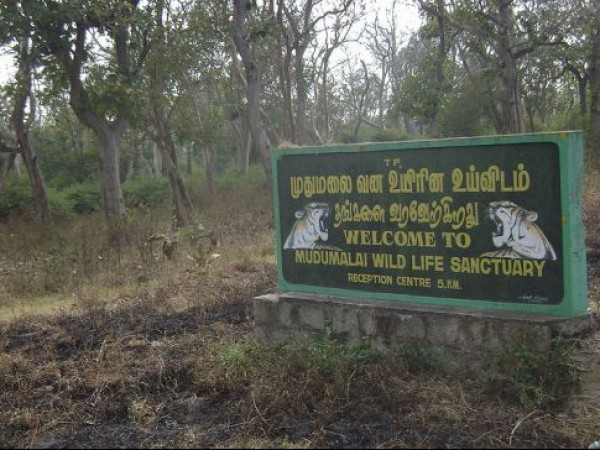 Mudumalai photos, Sign board