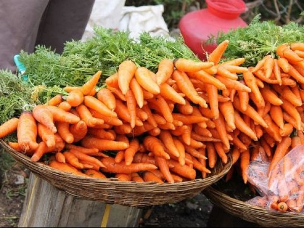 Ooty photos, Freshly Plucked Carrots