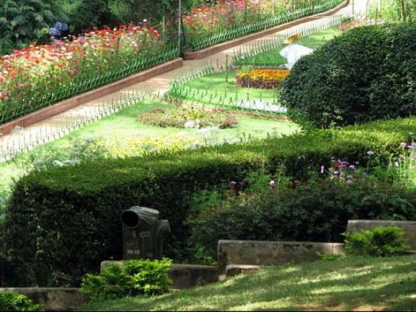 Coonoor photos, Sims Park - Floral Carpets