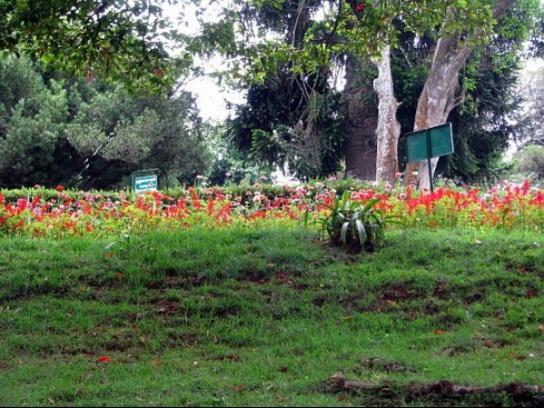 Coonoor photos, Sims Park - Display of colours by nature