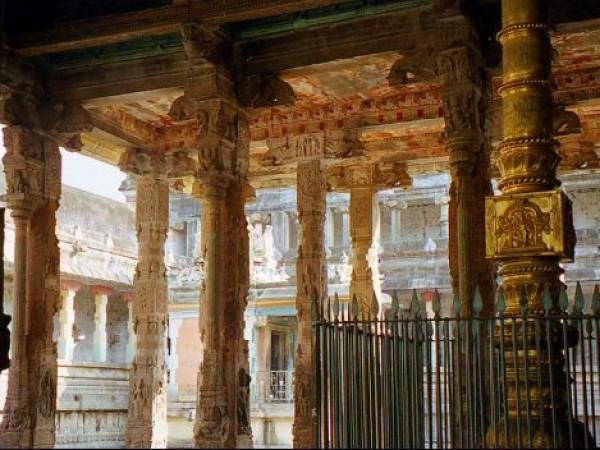 Chidambaram photos, Thillai Natarajar temple - Carved temple columns