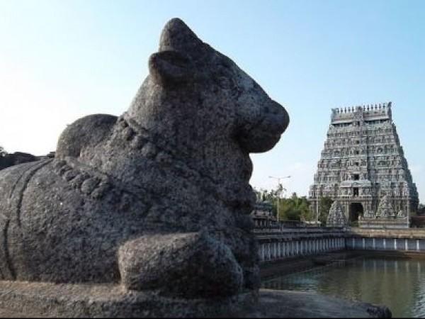Chidambaram photos, Thillai Natarajar temple - Nandi