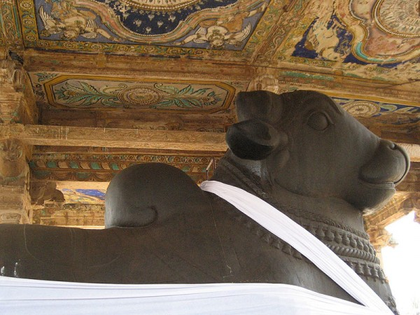 Thanjavur photos, Brihadeshwara temple - Nandi