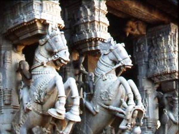Tirunelveli photos, Sri Varadaraja Perumal Temple - sculptures