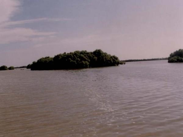 Thiruvarur photos, Muthupettai - A Beautiful View